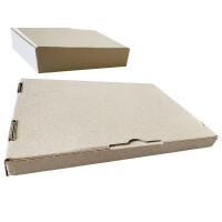 Graskarton Großbrief GB 2  230 x 160 x 20 mm